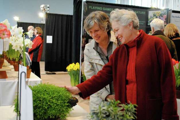 Christ Church in Greenwich held a Flower Show in their Parish Hall on March 3. Photo: Lauren Stevens/Hearst Connecticut Media Group