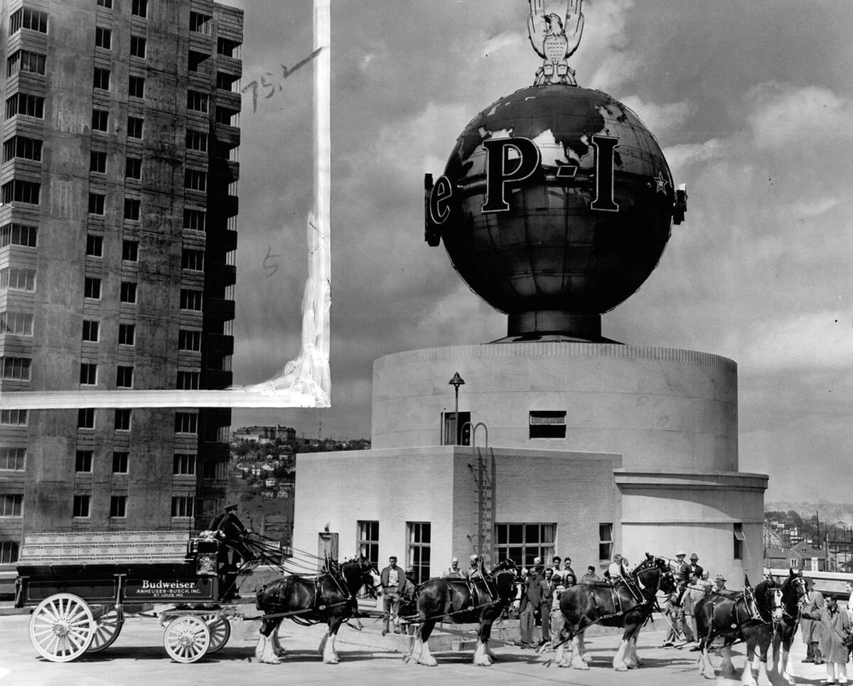 The Anheuser-Busch Clydesdales pose near the P-I globe, May 1950.