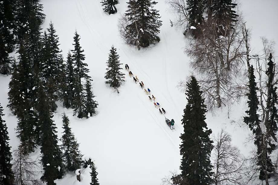 A musher competing in the Iditarod Trail Sled Dog Race heads toward the Finger Lake, Alaska, checkpoint on Monday, March 5, 2012. (AP Photo/Anchorage Daily News, Marc Lester) Photo: Marc Lester, Associated Press