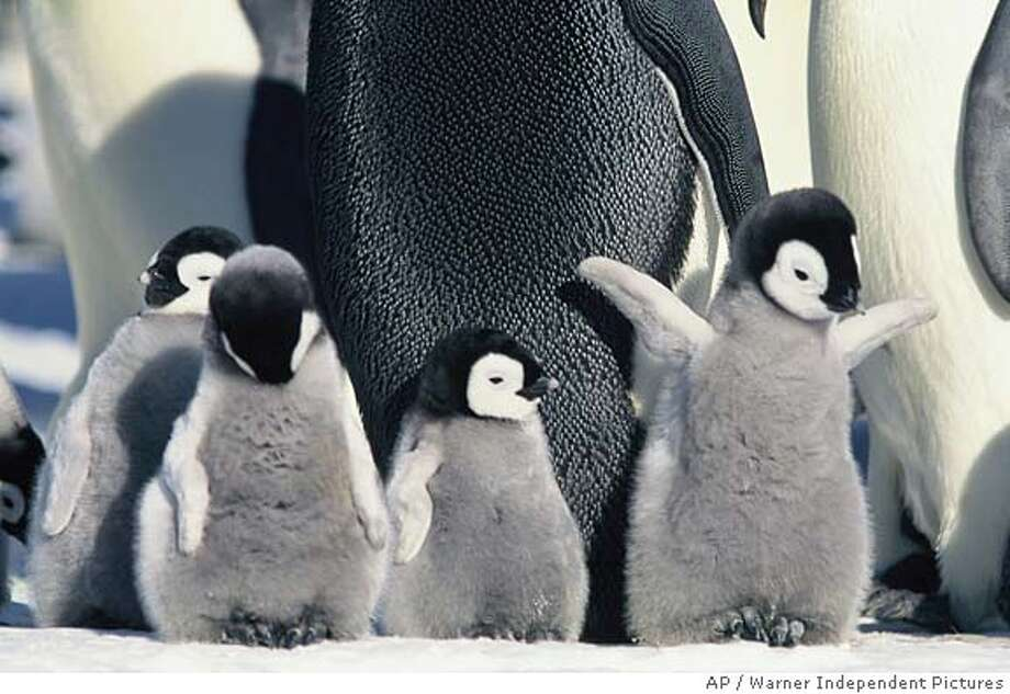 March of the Penguins, 2005 (Warner Independent Pictures)