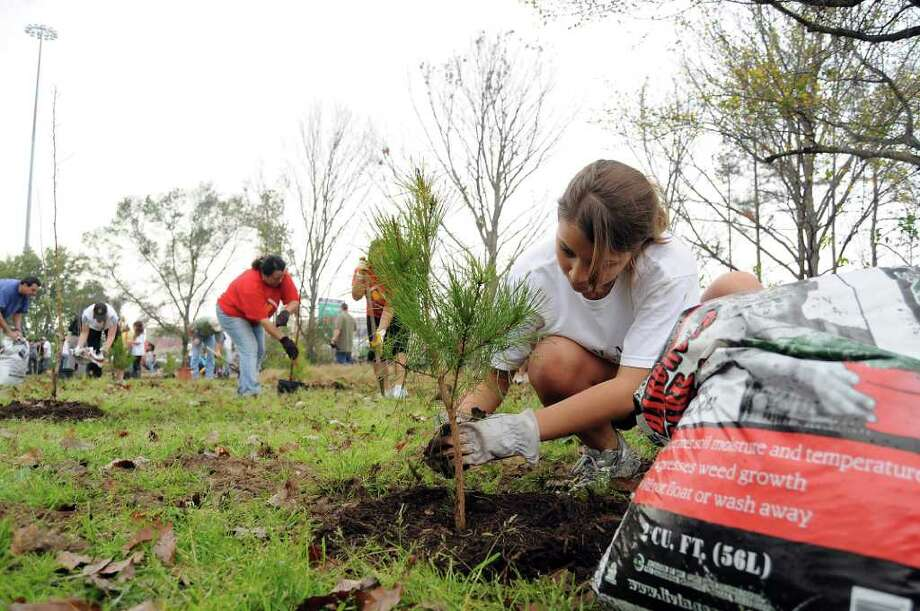 The city of Houston is working on a replanting program for the Kingwood esplanades as one of many tree replanting efforts under way around the area. Earlier this year, Krystal Nejia of Katy joined the hundreds of volunteers to plant trees at Memorial Park. Photo: Dave Rossman / © 2012 Dave Rossman