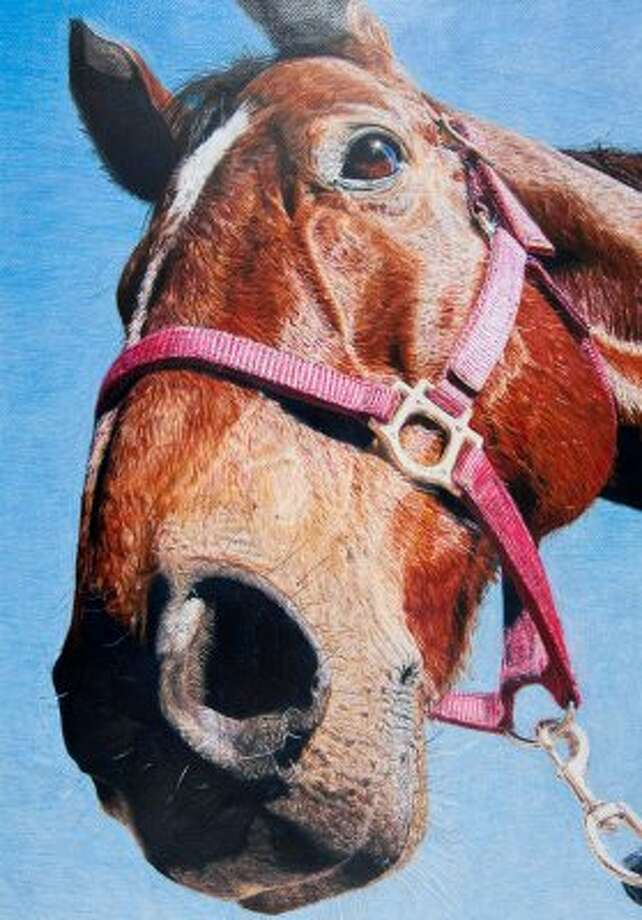 """""""I've Just Seen a Face,"""" by Shandey Ketchey of Aldine ISD.  Houston Livestock Show and Rodeo School Art Program.  (-- / Houston Livestock Show and Rodeo)"""