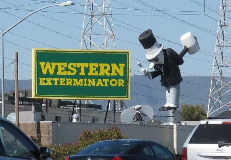 here s what happened to the western exterminator hammer guy on