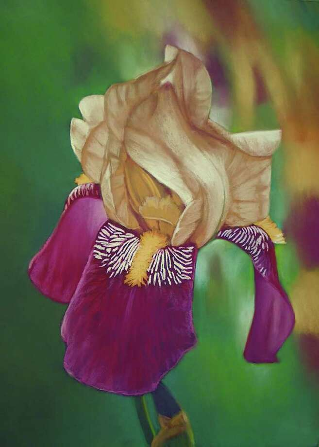 This painting of an iris shows Greenway Plaza-area resident Mark Coyle's technique. Photo: Tom Behrens