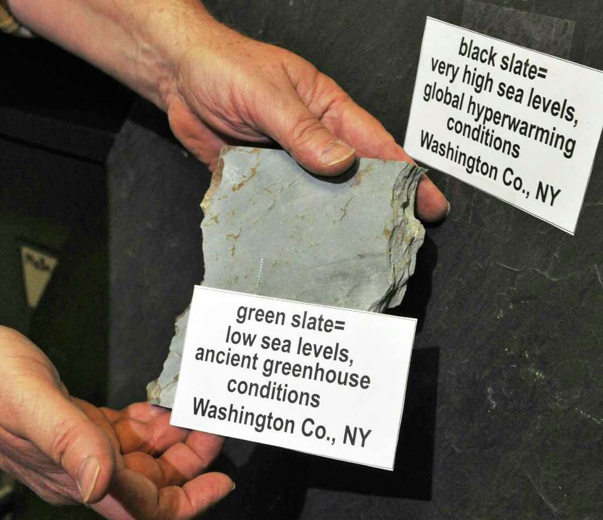 Dr. Ed Landing shows some of the shales found in Washington county for his research on how oceans drive ongoing climate change at his lab in the New York State Museum in Albany Wednesday March 7, 2012. (John Carl D'Annibale / Times Union)