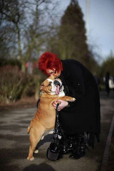 Eli the British Bulldog gets a cuddle from her owner Sue Leicity on Day one of Crufts at the Birming