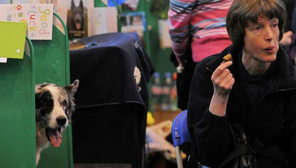A dog and its owner are pictured in the kennels on the first day of the Crufts dog show in Birmingha