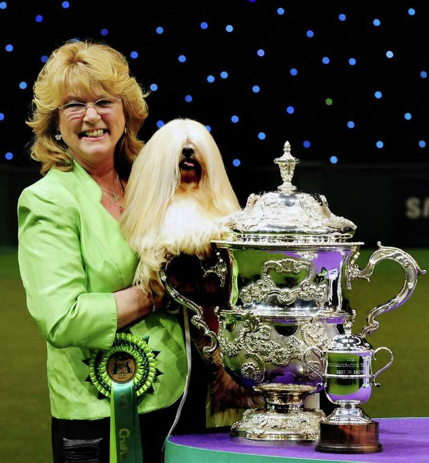 Elizabeth, a Lhasa Apso bread of dog, seen soon after being named the Crufts dog show winner of the Best in Show title, with owner Margaret Anderson, in Birmingham, England, Sunday March 11, 2012.   The Lhasa Apso dog called Elizabeth beat more than 21,000 other dogs of all kinds, over the annual four-day competition, to be judged as Crufts Best in Show.(AP Photo / Rui Vieira, PA) UNITED KINGDOM OUT - NO SALES - NO ARCHIVES Photo: Rui Vieira, AP / PA