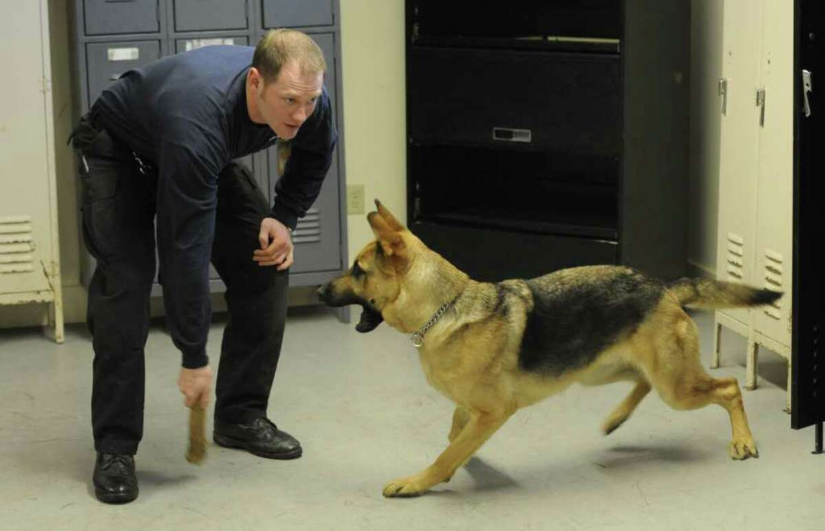 Saratoga County Sheriff's deputy Kevin Lancto works with his partner
