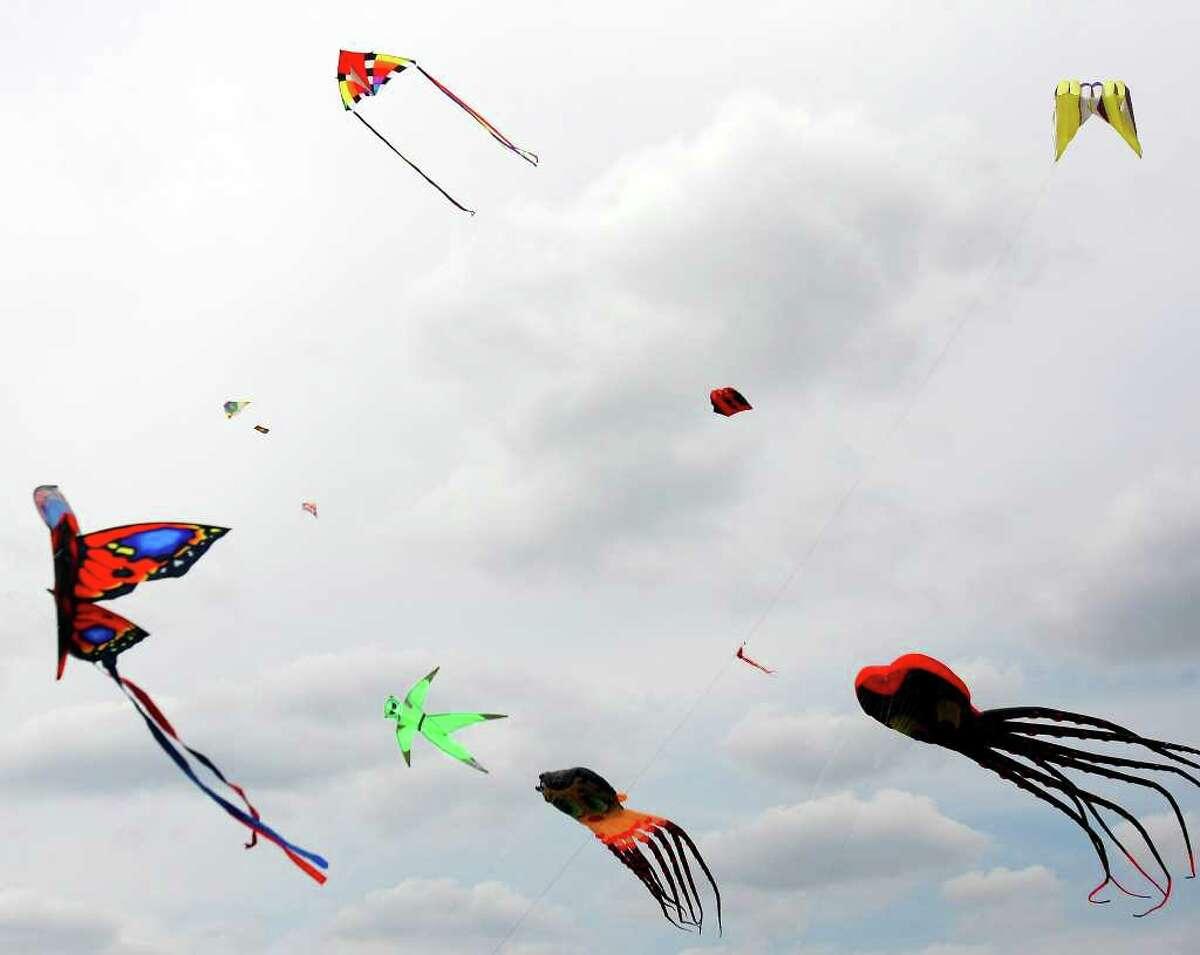FOR METRO - Kites fill the air during the 3rd Annual Kite Festival & Dog Fair,