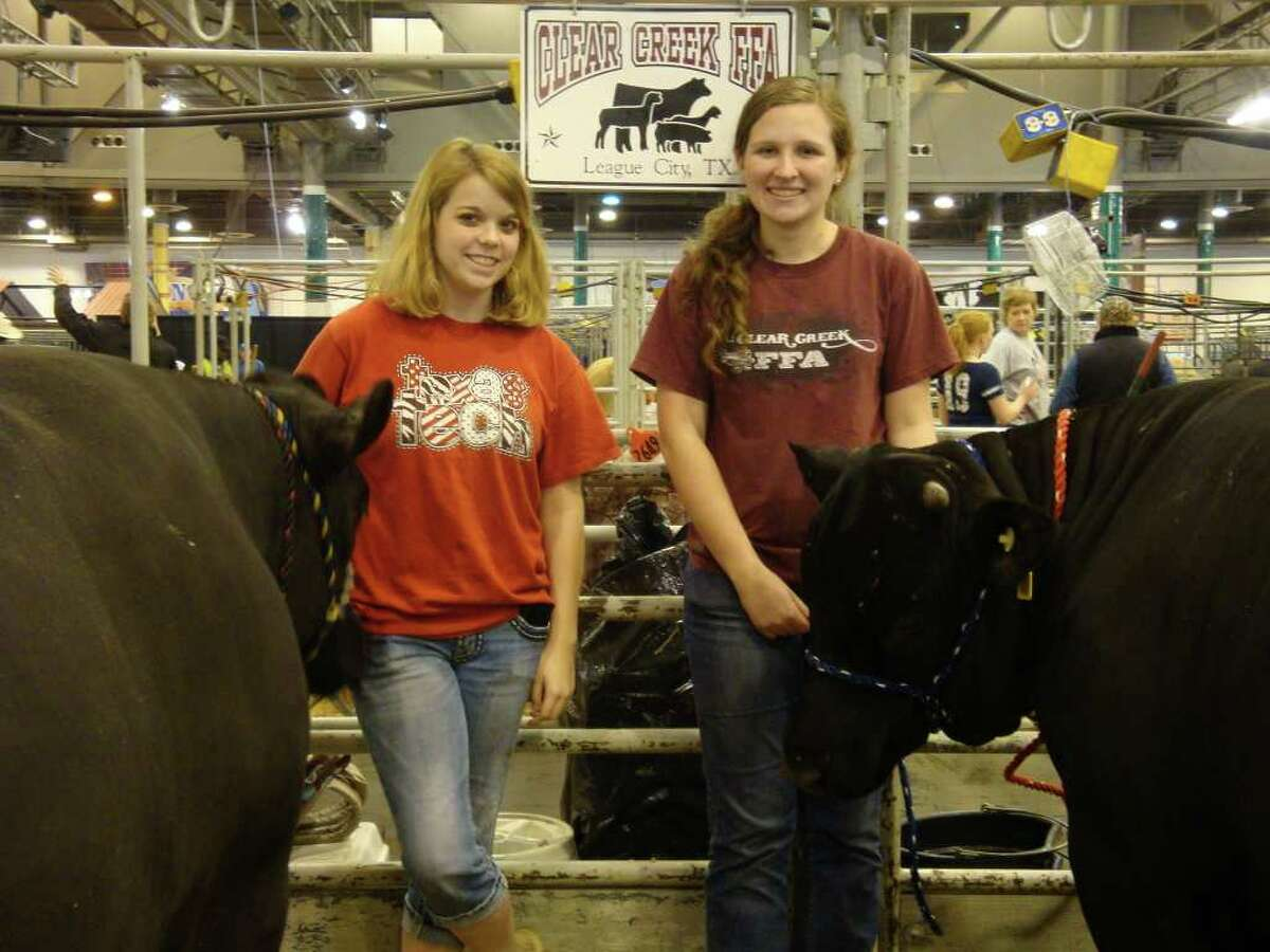 Clear Creek High School junior Michaela Pinder, right, shows off her Brangus steer, Mojo, and sophomore Shannon O'Quinn shows off her Simmental steer, Dax.