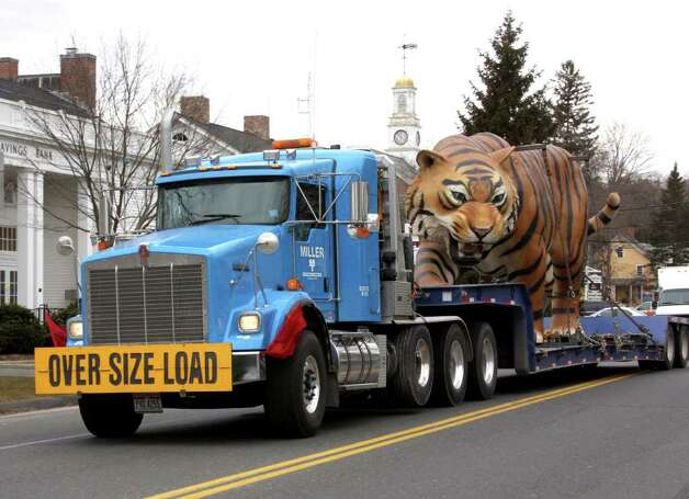 Itís not every day you see an oversize tiger moving along Main Street in Newtown, but this one was spotted Tuesday morning on its trip from Comerica Park in Detroit, home of the Detroit Tigers baseball team, to Slow Motion Inc. in Milford, where it will be repaired. Another tiger figure was traveling with it. Photo: Walter Kidd