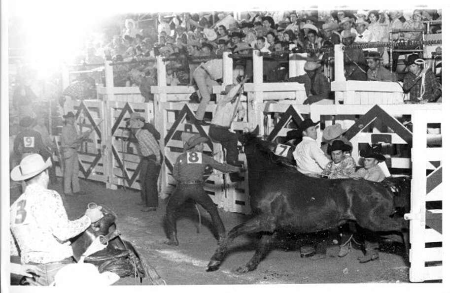 Rodeo-shy mount doesn't want a rider and the fun starts. (02/21/1963) (UNKNOWN / HOUSTON CHRONICLE)