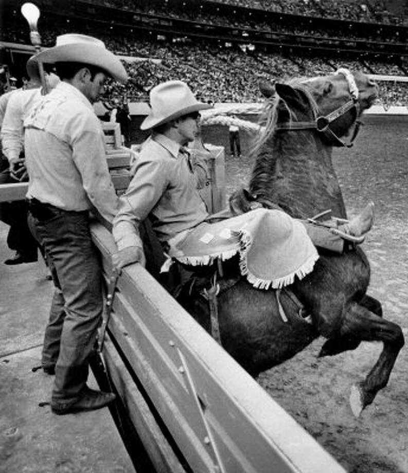 Wayne Hall vaults from chute on a fiery bucking bronc.  Jim Charles (L) helps rider into saddle at world championship rodeo. (03/01/1970) (OTHELL O. OWENSBY JR. / HOUSTON CHRONICLE)