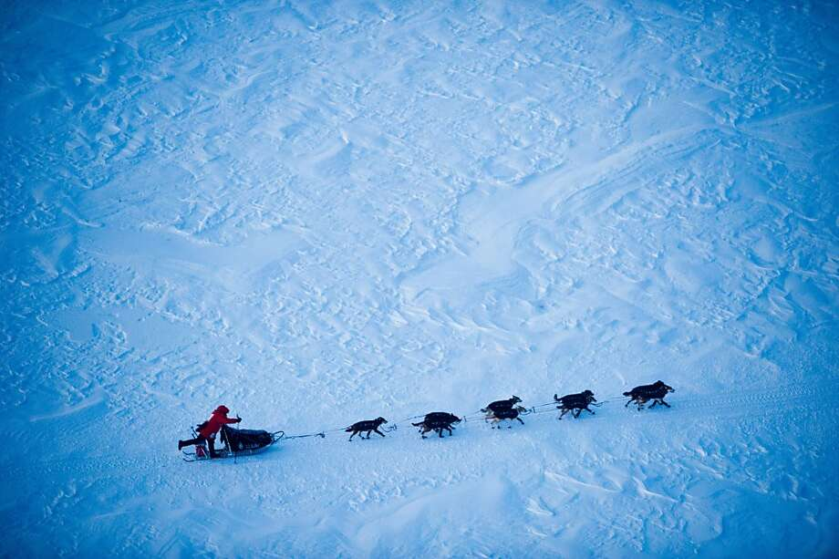 Iditarod front-runner Dallas Seavey makes his final drive toward Nome, Alaska, during the Iditarod Trail Sled Dog Race on Tuesday, March 13, 2012. (AP Photo/Anchorage Daily News, Marc Lester) Photo: Marc Lester, Associated Press