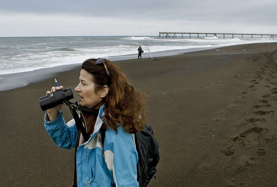 Citizen scientist, Susan McCarthy scans the surf along Sharp Park Beach as she collects data, in Pacifica, Ca. on Saturday March 10, 2012. The group, Gulf of the Farallones National Marine Sanctuary, has been collecting data along Northern California beaches, for years. With the debris field from last year's earthquake in Japan headed for the West Coast, they will monitor and record it if and when it finally arrives. Photo: Michael Macor, SFC