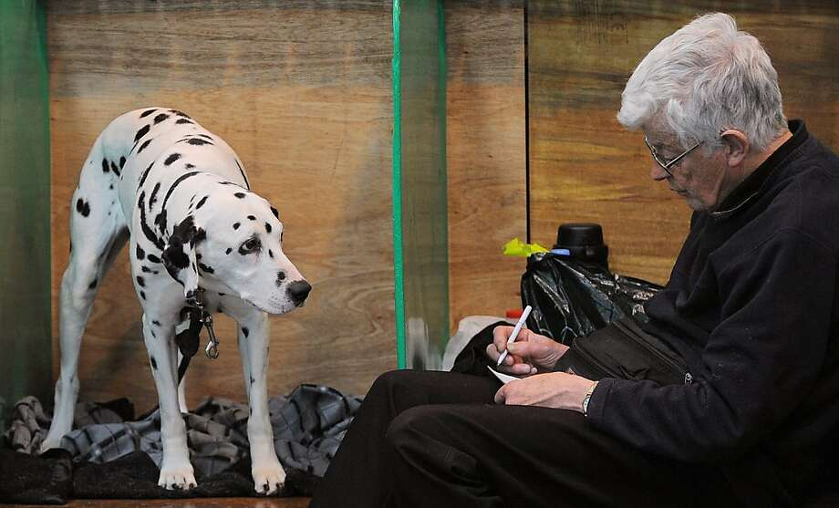 """A man sits with a Dalmatian dog in the kennels on the first day of the Crufts dog show in Birmingham, central England, on March 8, 2012. The annual event sees dog breeders from around the world compete in a number of competitions with one dog going on to win the """"Best in Show"""" category. Photo: Andrew Yates, AFP/Getty Images"""