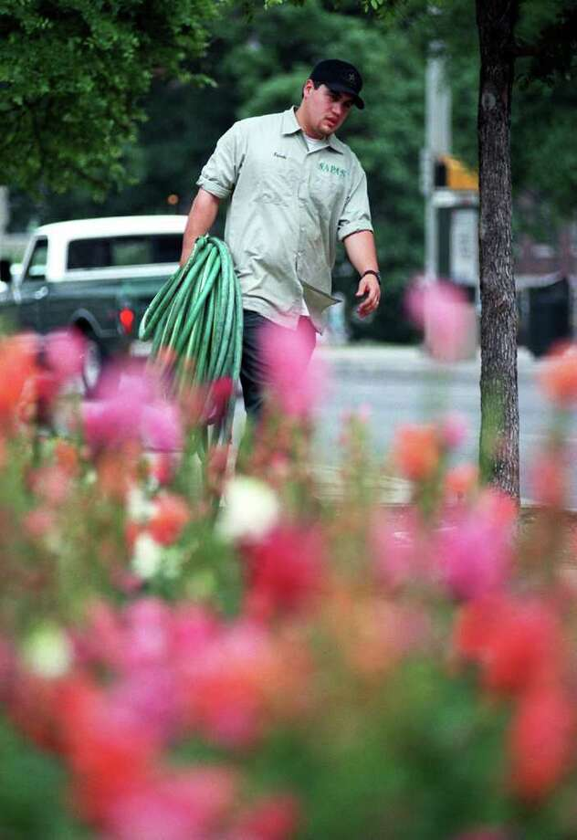 Chris Estrada of San Antonio Parks and Recreation hauls away a water hose along Market Street near colorful bluebonnets on Wednesday, April 15, 1998. Estrada was giving the surrounding trees and flowers a good soaking prior to the start of Fiesta to ensure the plants would survive the large crowds and traffic. Photo: KIN MAN HUI, Express-News File Photo