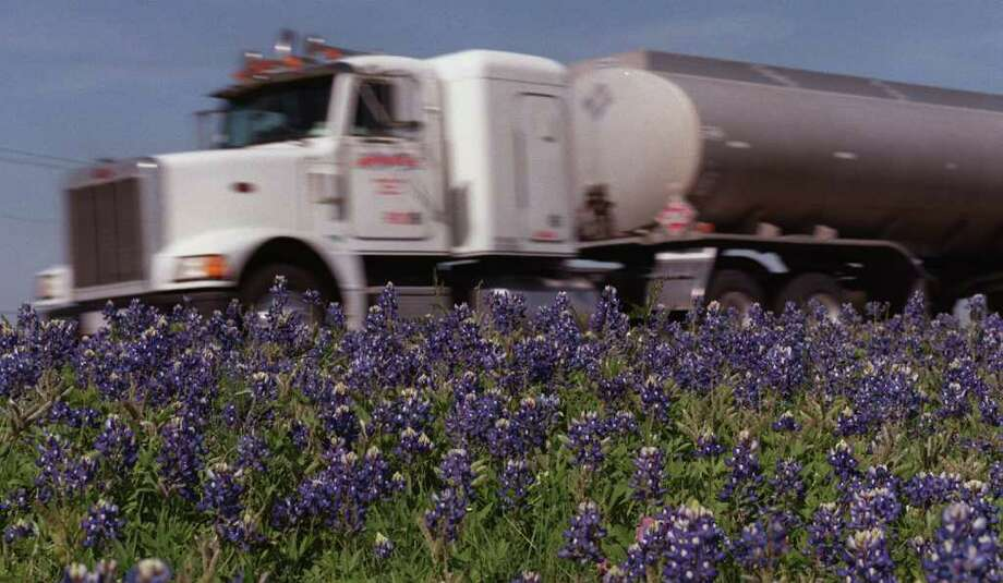The bluebonnets along U.S. 90 are in full bloom between Loop 410 and Loop 1604 as you head toward Del Rio on March 15, 1999. Photo: WILLIAM LUTHER, Express-News File Photo / EN
