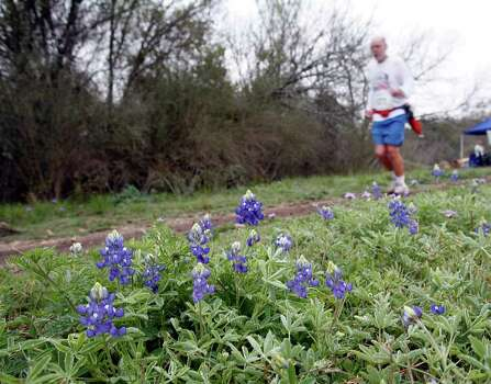 A trail runner passes by a patch of bluebonnets while competing in the Prickly Pear Trail Runs at McAllister Park on March 17, 2007. Photo: J. MICHAEL SHORT, Express-News File Photo / THE SAN ANTONIO EXPRESS-NEWS