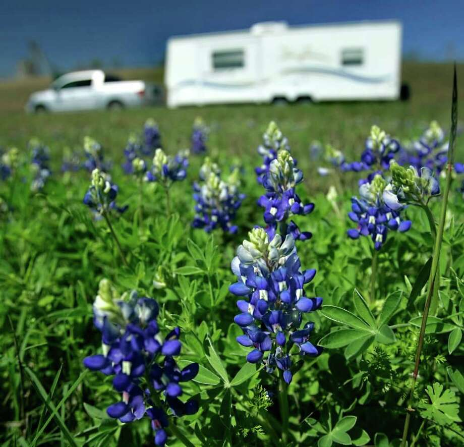 Bluebonnets are seen on March 15, 2007 on U.S. 90 between San Antonio and Castroville. Photo: WILLIAM LUTHER, Express-News File Photo / San Antonio Express-News