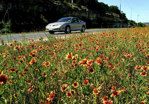 A car passes wildflowers along U.S. 281 in North Bexar County on April 26, 2005. Photo: WILLIAM LUTHER, Express-News File Photo / SAN ANTONIO EXPRESS-NEWS