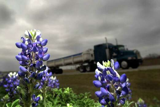 Bluebonnets adorn Interstate 37 near exit 109 as a truck rolls south on March 19, 2002. Photo: BILLY CALZADA, Express-News File Photo / SAN ANTONIO EXPRESS-NEWS