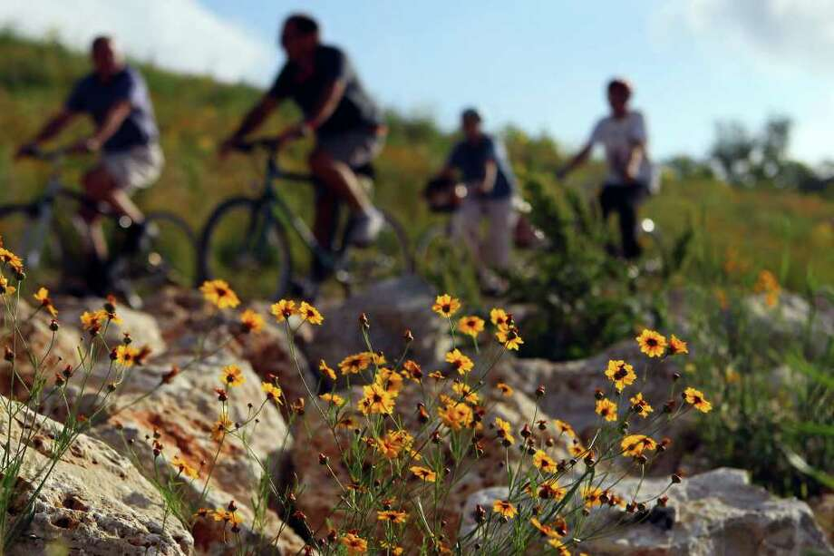 County officials on a bicycle tour pass wildflowers growing on the Mission Reach portion of the San Antonio River on June 2, 2011. Photo: Express-News File Photo