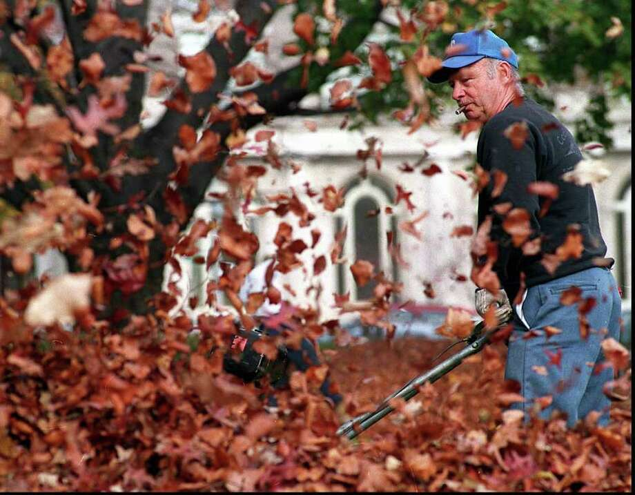 An August ban on gas-powered leaf blowers won the endorsement of the Greenwich Board of Selectmen Thursday. (photo/Bob Luckey) Photo: Bob Luckey, GT