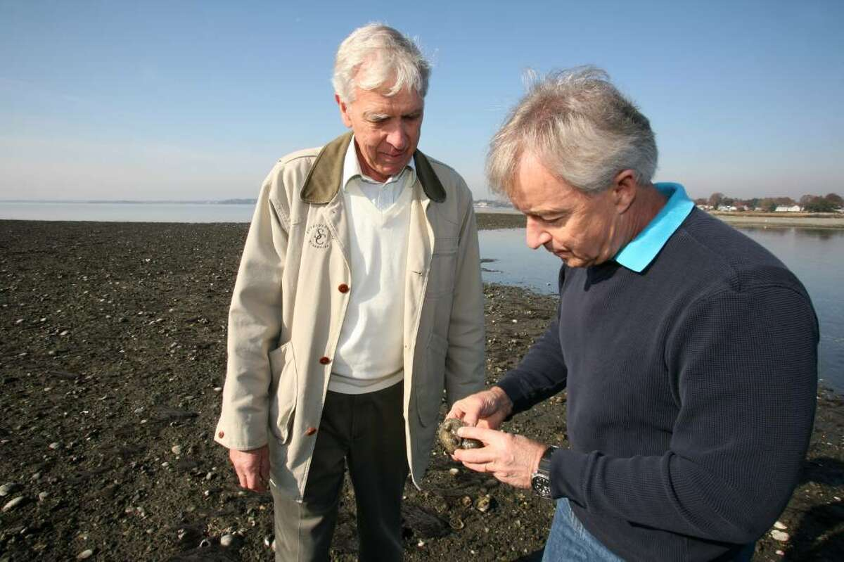 Greenwich Shellfish Commission members Bill Fossum and Roger Bowgen examine oysters from a recreational shellfish bed that will be open to the public later this week on Greenwich Point.