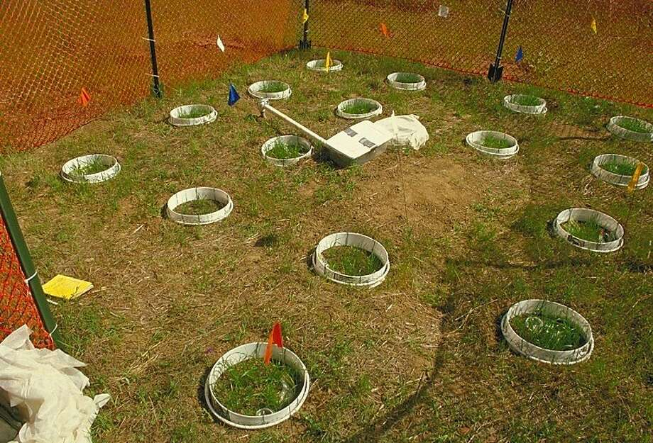 Field Enclosures.JPG Photo: Thais Winsome