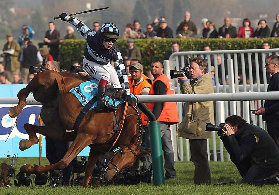 Awkward dismount:Jockey Richard Johnson and Wishful Thinking tumble during the Queen Mother Champion Steeplechase at the Cheltenham Racecourse. Neither was seriously hurt. Photo: David Jones, Associated Press