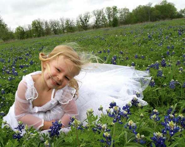 4-year-old daughter, Penelope Mae, who loves to play dress-up in her wedding gown. Photo taken in bluebonnet field about 20 miles east of Brenham. Photo: Angela Holden, Ho / handout
