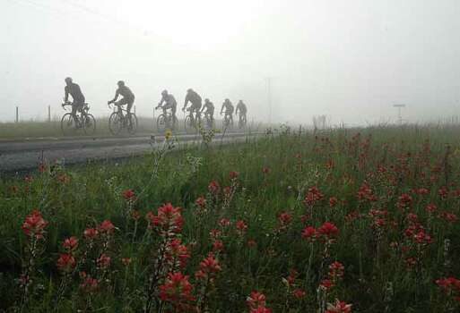 Texas wildflowers dot the  road side as riders pedal in the heavy morning fog during 19th Annual BP MS-150 Bike Tour just outside of Bellville,Texas April 12,2003. James Nielsen (Special to the Chronicle) Photo: James Nielsen, Ho / Freelance
