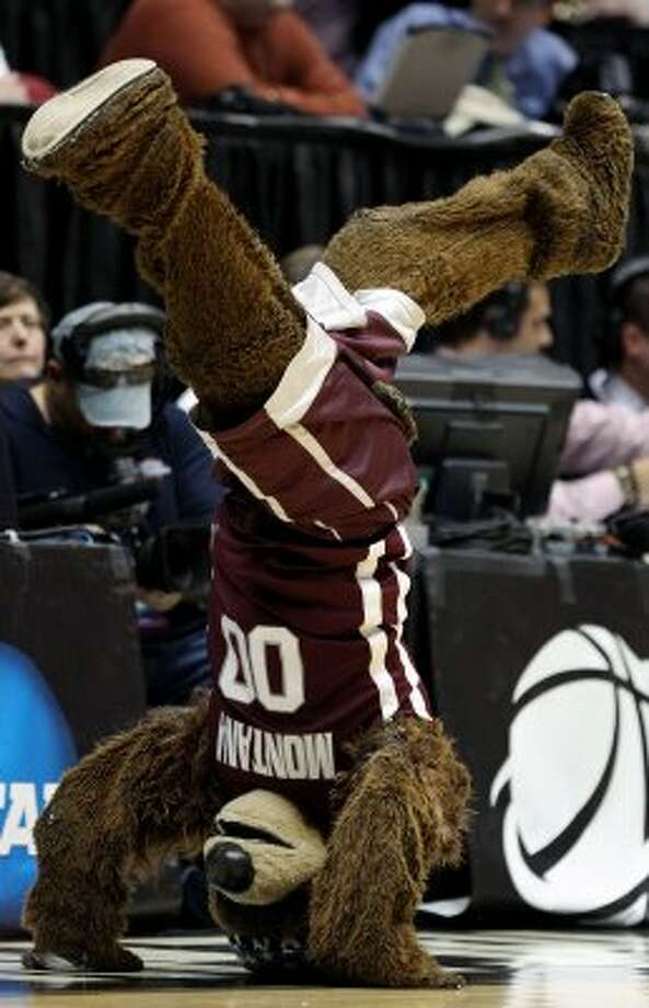 Monte of the Montana Grizzlies looks very warm in that furry suit. (Christian Petersen / Getty Images)