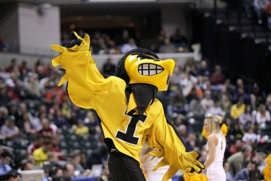 Herky the Hawk of Iowa possesses a color scheme unknown to hawks in real life. (Michael Conroy / Associated Press)