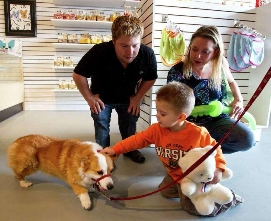 39 little couple 39 opens pet shop in rice village houston chronicle - Grand petshop ...