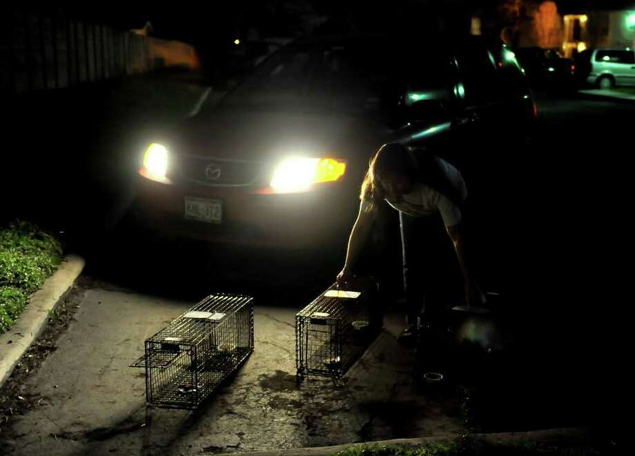 Kathryn Roan sets up her feral cat traps near the city's southwest side for the San Antonio Feral Cat Association. Roan was in a residential area on Feb. 29, 2012. Photo: Robin Jerstad/For The Express-News
