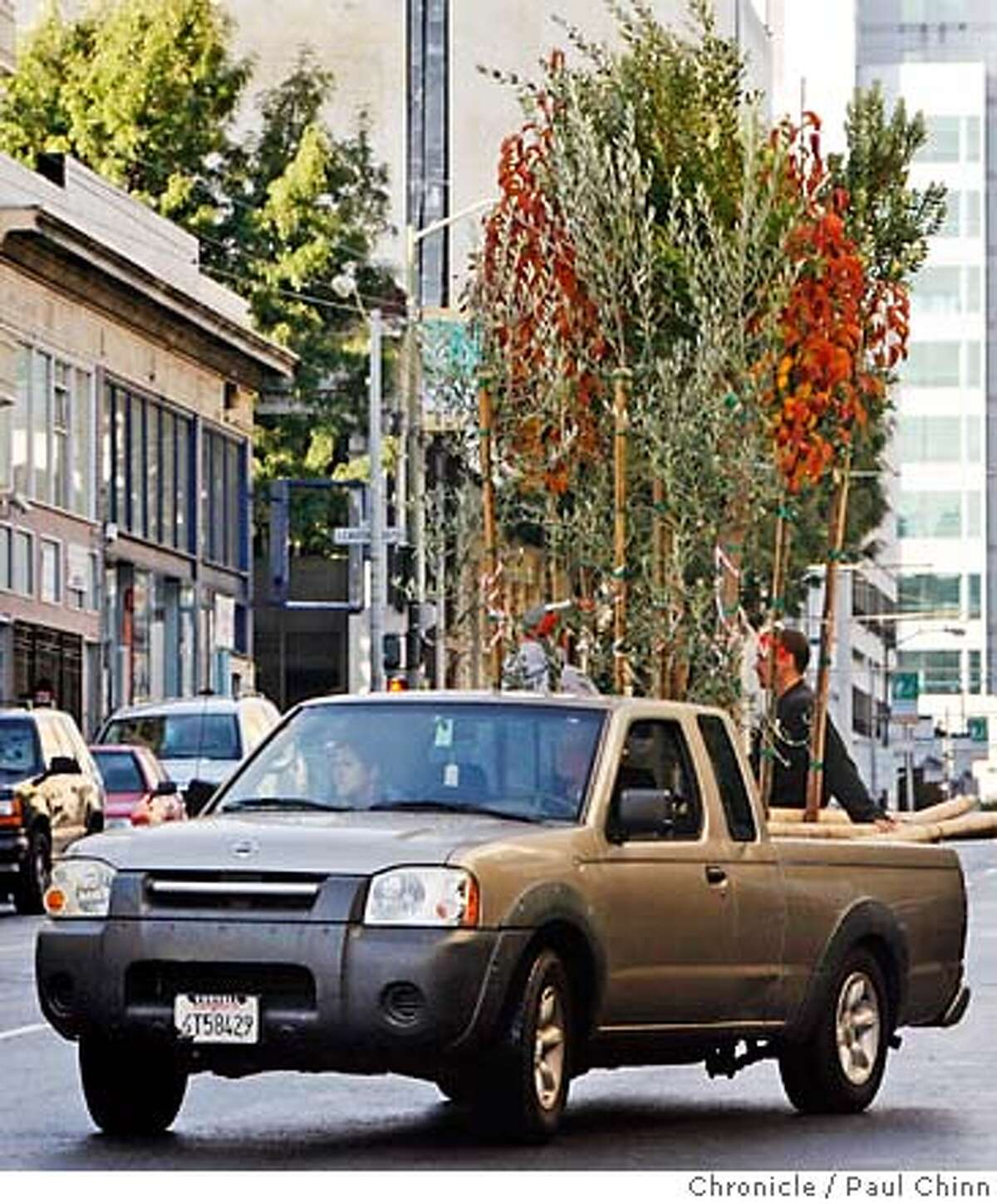 A pickup truck heads out to distribute trees when volunteers helped the Friends of the Urban Forest plant 30 trees in the Tenderloin neighborhood in San Francisco, Calif. on Saturday, Dec. 9, 2006. PAUL CHINN/The Chronicle MANDATORY CREDIT FOR PHOTOGRAPHER AND S.F. CHRONICLE/ - MAGS OUT