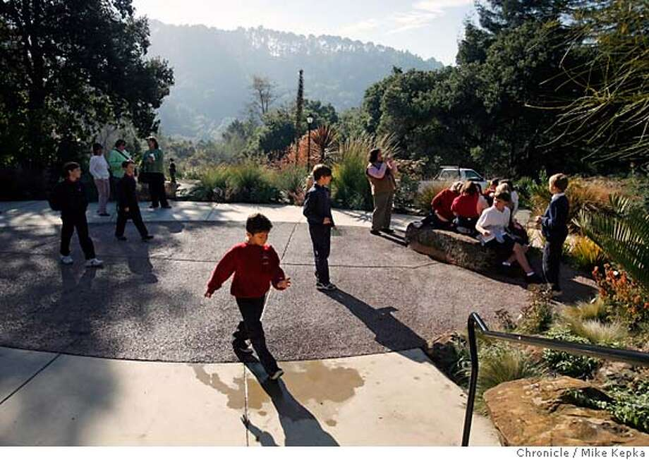 paving00008_mk.JPG  4th graders visiting from St. Theresa's school in Oakland walk over the recently laid Pervious. The UC Berkeley Botanical gardens used a new mixture of concrete called Pervious in there main entry way. The new mixture absorbs water and has a decorative texture that contrasts with tradition concrete.  Mike Kepka / The Chronicle MANDATORY CREDIT FOR PHOTOG AND SF CHRONICLE/ -MAGS OUT Photo: Mike Kepka