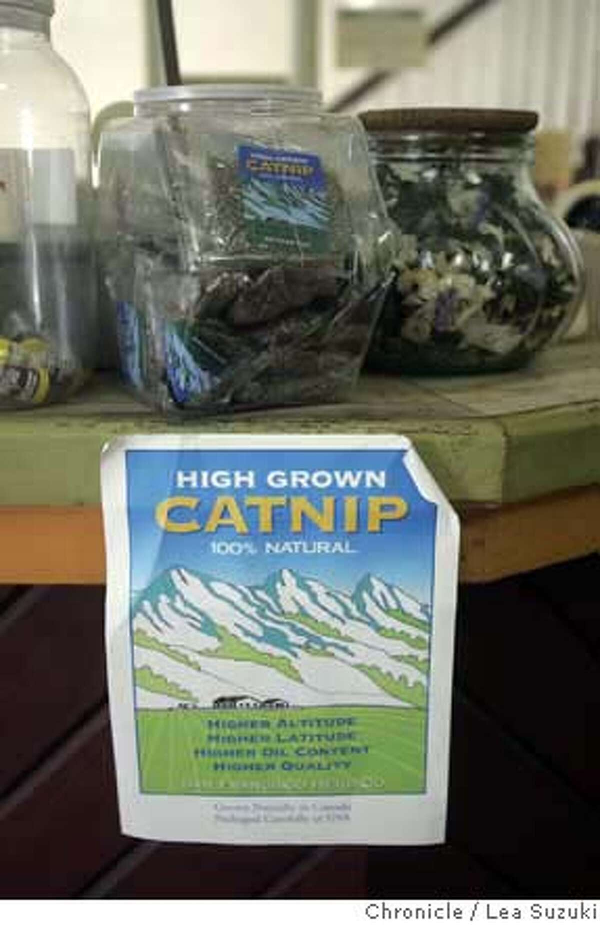 catnip13_026ls.JPG Cat nip display at the counter of the San Francisco Herb Co. Description:� As part of our tribute to Bay Area cat culture in the Nov. 13 Pink section, we check in with one of San Francisco's biggest catnip dealers. Neil Hanscomb, owner of the San Francisco Herb Co.has beening running the special