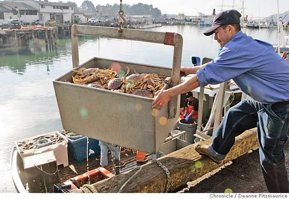_G1X0354.JPG  The first crab fishing boat, New Rayann (cq) out of San Francisco, arrives at Pier 45 on the first day of crab season and the catch is unloaded at Alber Seafoods. Photographed in San Francisco on 11/15/06. (Deanne Fitzmaurice/ The Chronicle) Mandatory credit for photographer and San Francisco Chronicle. /Magazines out. Photo: Deanne Fitzmaurice
