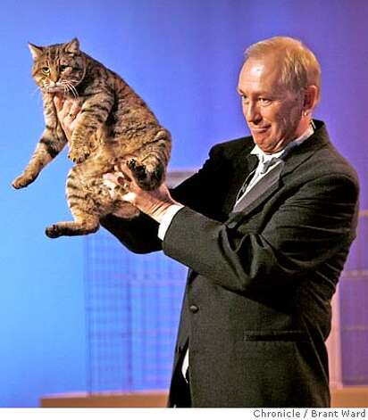 Judge Larry Adkinson held a cat he admired during the taping of a television program featuring the winners of the Cat Fanciers show.  The 19th annual Cat Fanciers show was held at the San Mateo Expo last weekend. The three-day event showcases 750 cats representing 41 breeds.  {Brant Ward/San Francisco Chronicle}11/19/06 Photo: Brant Ward