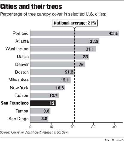 Cities and their Trees. Chronicle Graphic