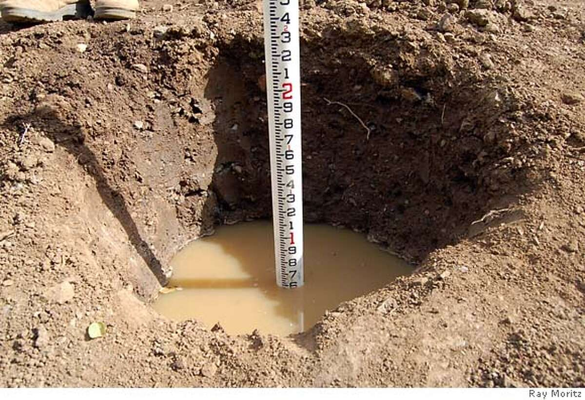 If the hole drains poorly or not at all as in this case the location will be a poor site for root extension as well as poor water relations.