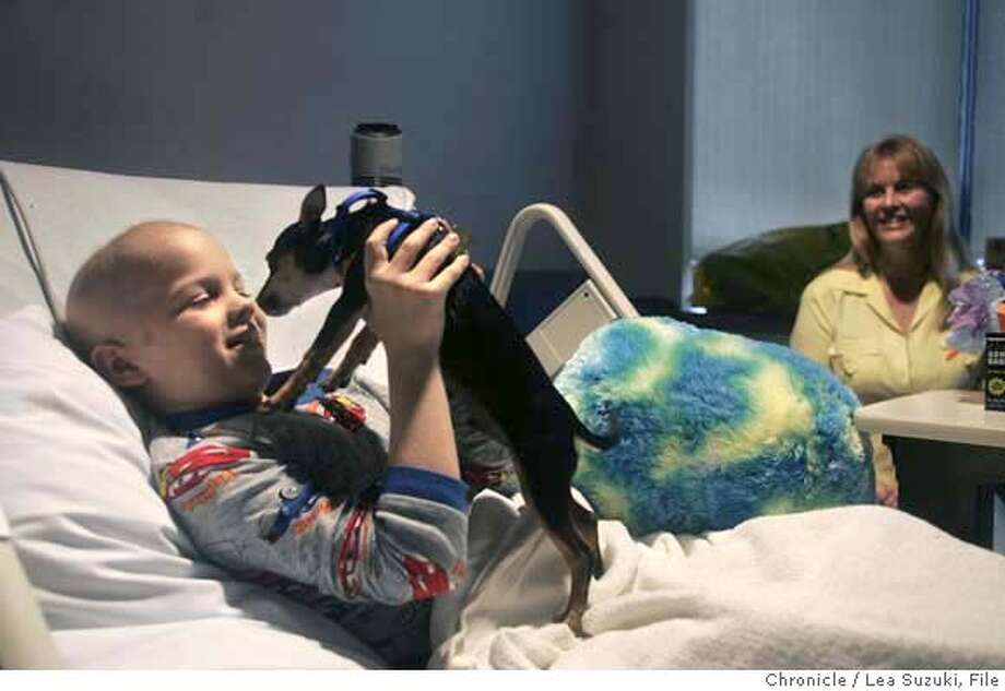 chemo07_113_ls.JPG  Kyle Wetle, 8, is reunited with Chemo, his Chihuahua puppy in his hospital room at UCSF Children's Hospital on Wednesday, September 6, 2006. In the background is Kyle's grandmother, Kathi Sheehan.  Photo by Lea Suzuki/The San Francisco Chronicle  Photo taken on 9/6/06, in San Francisco, CA. **(themselves) cq.  Ran on: 09-07-2006  Kyle Wetle, an 8-year-old leukemia patient, is reunited with Chemo, his Chihuahua puppy, at UCSF Children's Hospital on Wednesday. Chemo was returned after being stolen from a UCSF garage last weekend. At right is Kyle's grandmother Kathi Sheehan. See story on Page B1.  Ran on: 09-07-2006 MANDATORY CREDIT FOR PHOTOG AND SAN FRANCISCO CHRONICLE/ -MAGS OUT Photo: Lea Suzuki