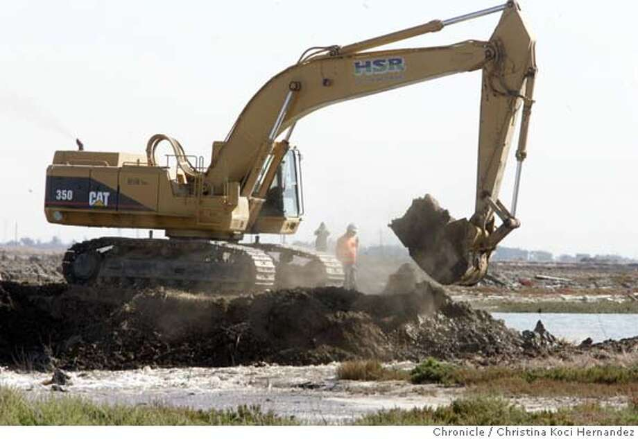 Earth removed to allow Bay water to enter salt flat. With one blow from a heavy earth excavator Thursday, the waters of San Francisco Bay will rush over land near Hayward that has been dry since the 1800s. By next year, the bay's fish, shorebirds and waterfowl will have 600 acres of newborn tidal marsh for food and shelter called the Eden Landing Ecological Reserve.Along the Bay Trail, people will be able to walk the 15 miles between Union City and San Leandro off city streets near open space and see the original edges of the bay. Reclaiming the land formerly diked for farming and salt production is part of a restoration effort to undevelop the bay for recreation and enlarge the welcome mat for the millions of migratory birds that stop over on the Pacific Flyway.. (CHRISTINA KOCI HERNANDEZ/THE CHRONICLE) Mandatory Credit For Photographer and San Francisco Chronicle/No-Sales-Mags Out Photo: Christina Koci Hernandez