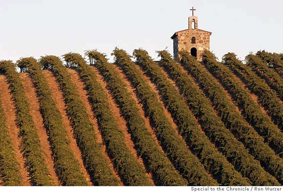 The hills are scenic at Red Willow Vineyards in Yakima Valley. Photo by Ron Wurzer, special to the Chronicle