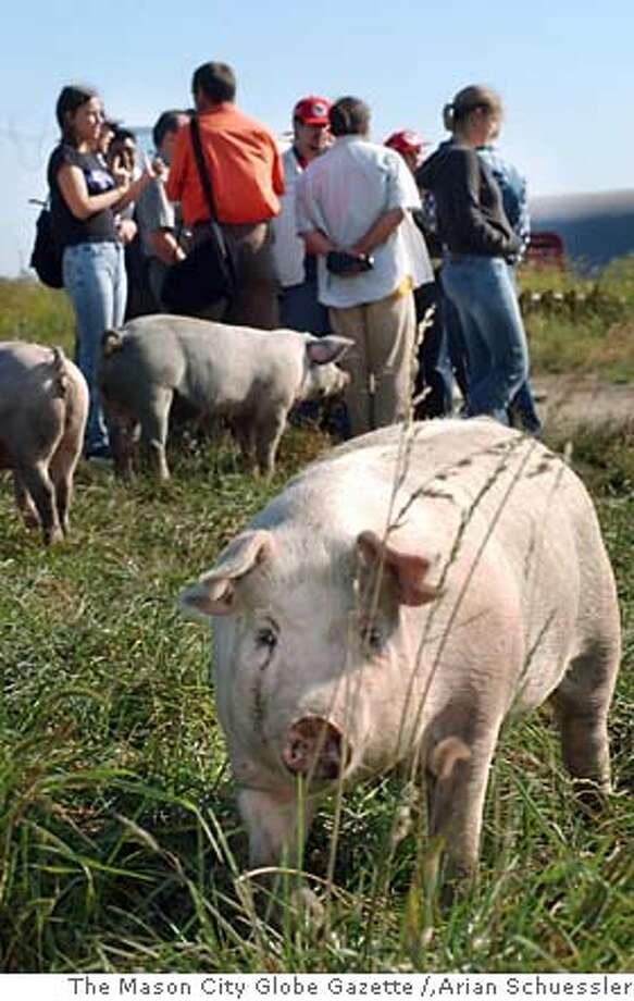"A group of nine farmers from around the world tour Iowa and Wisconsin this week as part of a ""factory farm tour are shown at Niman Ranch, Wednesday, Sept. 3, 2003, in Thornton, Iowa. They're in the Midwest to see the advantages of sustainable farming and gauge the impact of livestock confinement facilities, which are starting to be built in other countries. (AP Photo/The Mason City Globe Gazette, Arian Schuessler) CAT Photo: ARIAN SCHUESSLER"