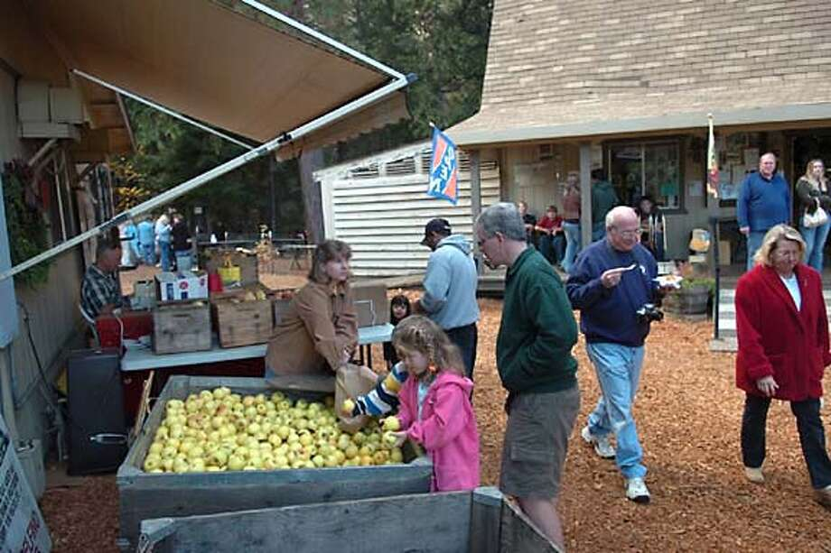 A visitor checks the stock on Apple Hill. Photo by Bill Scales